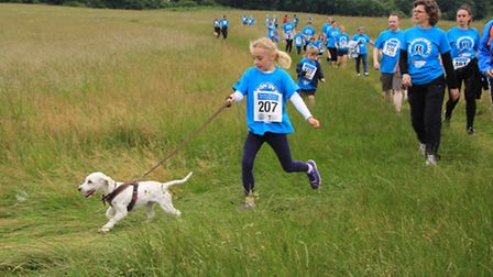 Even the pooch got involved. PICTURE: Clive Porter.