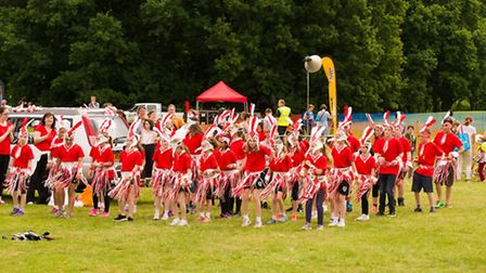 Different schools took part in the annual Harpenden Carnival