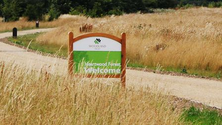 The entrance to Heartwood forest