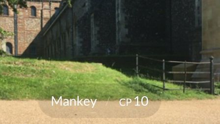 There are various Pokémon popping up around St Albans