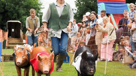 Pig racing was a real highlight.