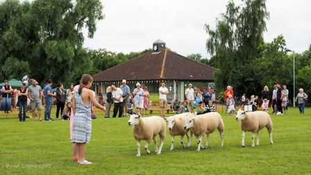 The country fair was held at Melbourn Pavillion and Recreation Ground.