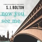 Now You See Me by SJ Bolton