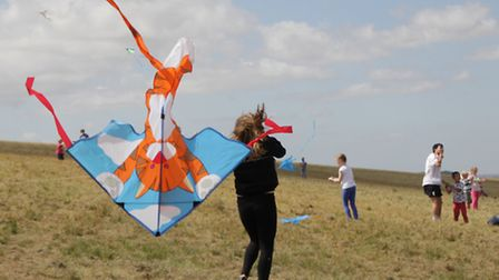 The windy conditions were ideal for a kite festival. PICTURE: Clive Porter.