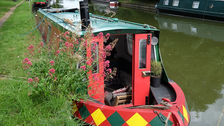 The boat is moored on the canal near Berkhampstead