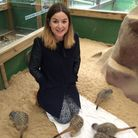 Crow reporter Rebecca hangs out with the meerkats.