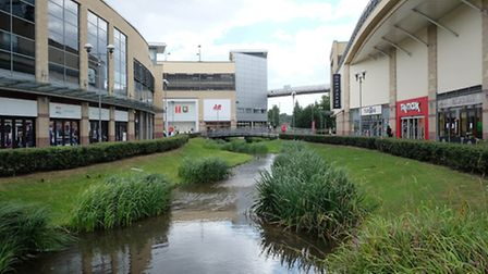 Water feature: The River Gade