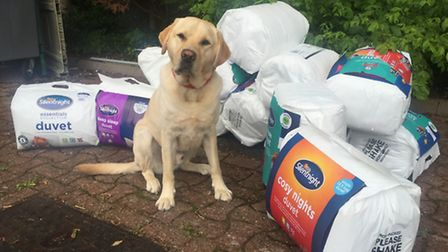 One of the guide dogs pictured with the bedding that was stolen