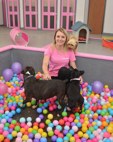 Divine Canine at Ramsey, owner Anna Burgess, with her dogs