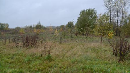 The proposed quarry site on Ellenbrook Fields