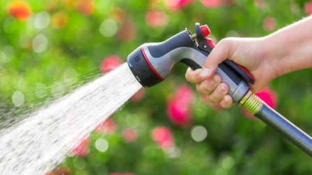 Attaching a trigger nozzle to the garden hose is advised