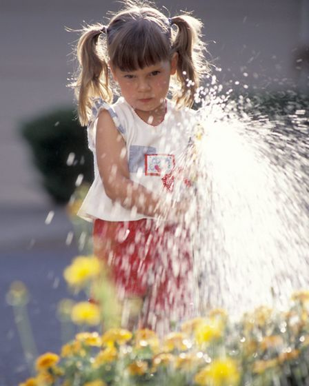 Sparingly watering the garden conserves resources