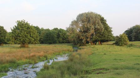 A view of the River Ver at Redbournbury
