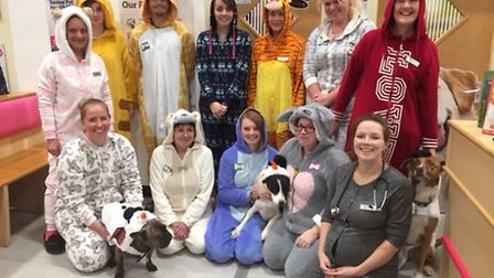 The Vets4Pets Huntingdon team held a Type Onesie day.