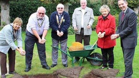 The Crocus planting at St Mary's Church