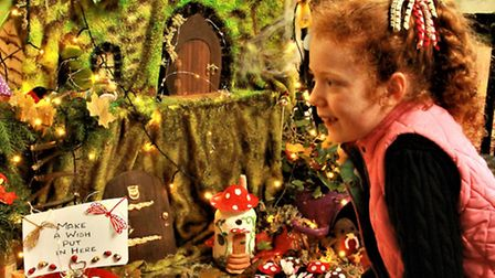 8 year old, Minna Holliday in awe with the Cam Valley Crafts exhibit At the Bottom of the Garden'. P