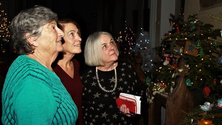 Anne Young, Theresa O'Malley, and Margaret Goddin, who have contributed to making the Festival a roa
