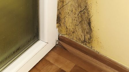 Not nice: Follow these top tips for getting rid of mould in your home