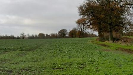 Furze Field, near Sandridge, could have 0.45 million tonnes of sand and gravel extracted by Cemex. I