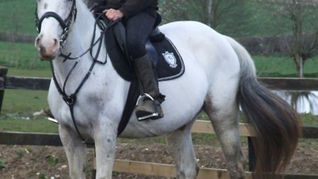 """The driver """"sped off"""" after Sarah had fallen off of the horse and crawled out of his way"""