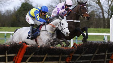 Divin Bere (far side) and Master Blueyes (near) battle out a thrilling finish to the Equimark Horses