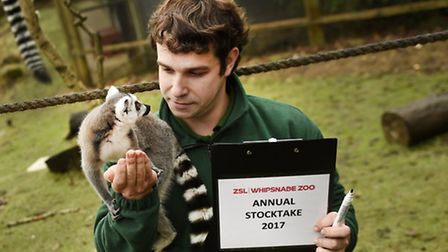 Annual stocktake at Whipsnade Zoo.