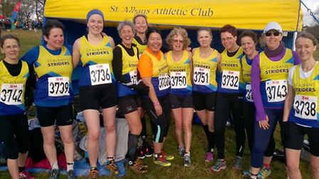 St Albans Striders' get ready to take on the Southern Cross Country Championships at Parliament Hill