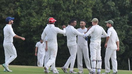 Greenwood Park celebrate a wicket. Picture: DANNY LOO