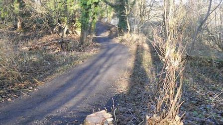 New woodland path linking Crabtree Fields car park with Lea Valley Walk.