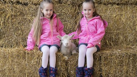 Twins Summer and Tia Price were given exclusive access to Willows Activity Farm to mark the start of