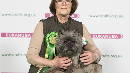 Geri Robinson from Reed with Ellie-May, a Cairn Terrier and Best of Breed winner, at Crufts 2017.