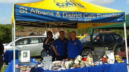 The gazebo which was stolen. Supplied by St Albans Cats Protection.