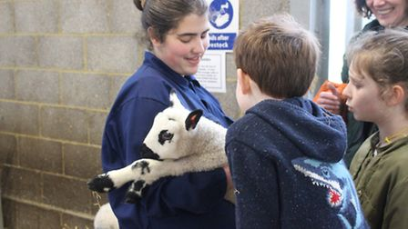 A student with a lamb.