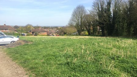 The land the conservators wish to swap with another patch near Therfield.