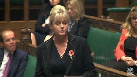 St Albans MP Anne Main in the House of Commons.