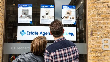 Animal magic: Passersby check out the cardboard cat houses on offer at the Blue Cross Estate Agent f