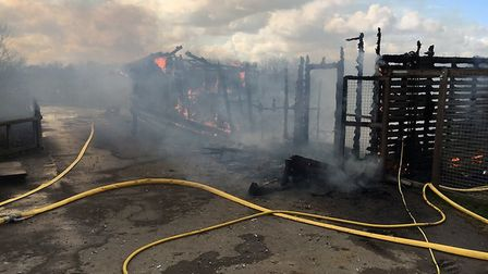 A fire broke out in a stable block at Hamerton Zoo.