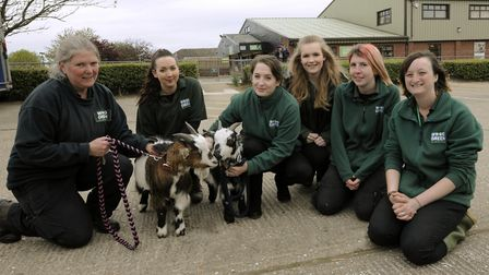 Jackie Allsop, Charlotte Ford, Amelia Jacobs, Shannon Rochford, Sally Richards, and Clare Burling at