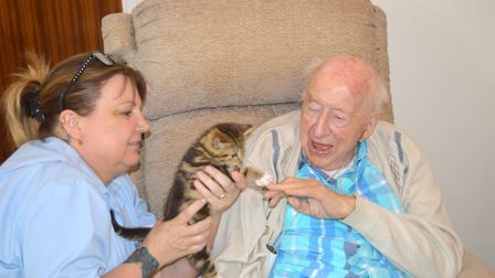 Dennis Aston boops paws with a kitten