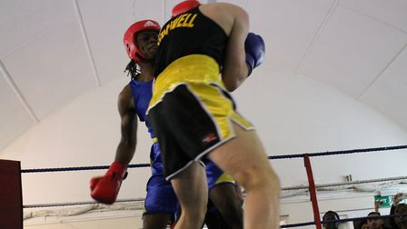 St Albans Boxing Club's Moses Mabote (blue).