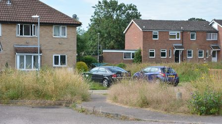 Overgrown grass in Squires Court, Eaton Socon - one of many sites which prompted complaints.