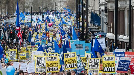 Over one million people took part in the anti-Brexit 'Put it to the People' march - the Lib Dems are