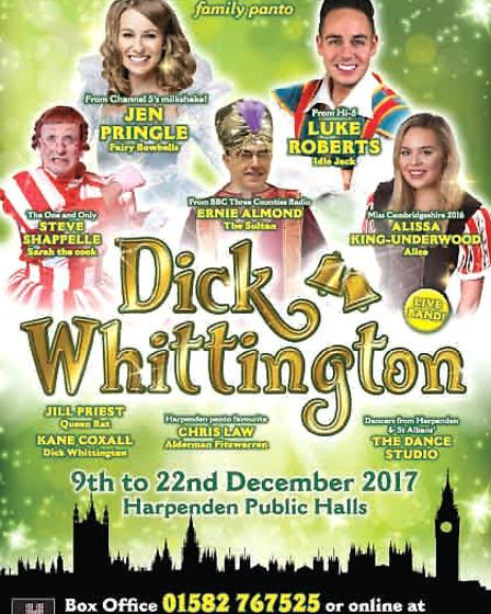 The cast of this year's Harpenden Public Halls pantomime Dick Whittington