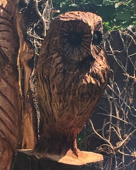 The chainsaw carving in the back garden at St Mary's Street