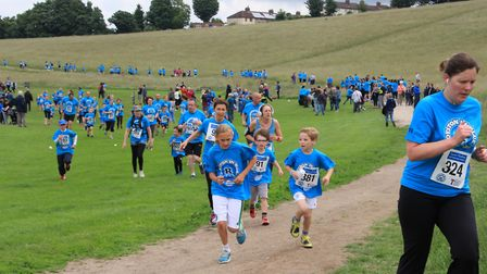 A sea of blue on the heath. Picture: Clive Porter