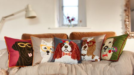 Animal friends embroidered cushions available in labrador, westie, king charles, springer spaniel an