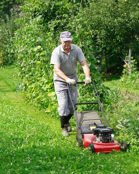 It's not essential to water lawns during warm spells as they recover once cooler, wetter weather ret
