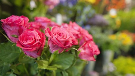 Saying it with flowers: Roses mean a lot to Deborah