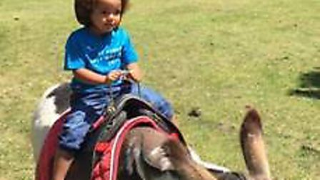 Donkey rides at Larks in the Parks 2017