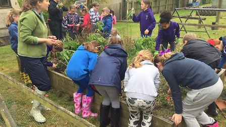 Children growing plants with Outdoor School leader Alix Marschani. Picture: Courtesy of Therfield Fi